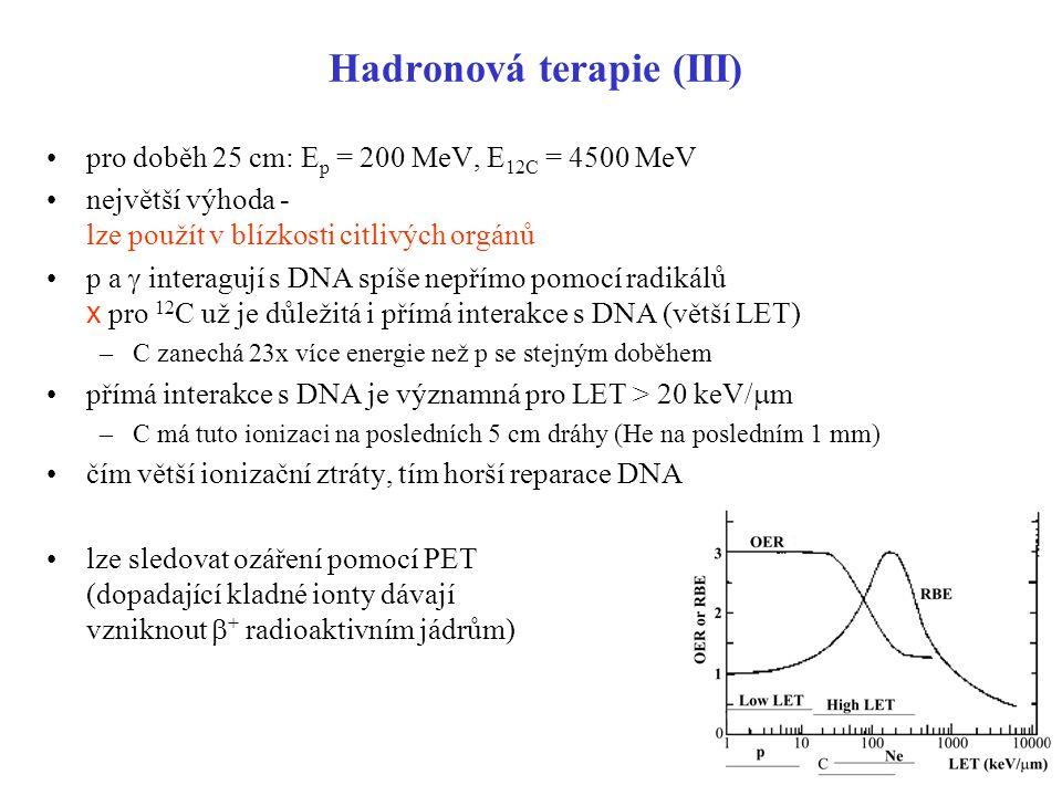 Hadronová terapie (III)