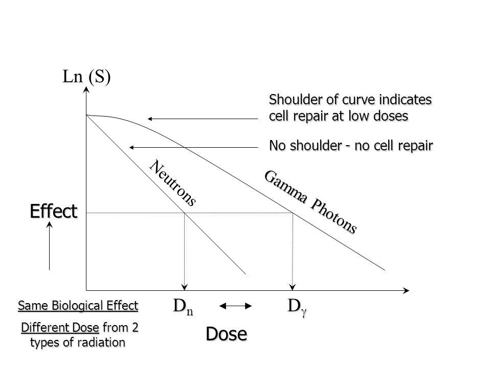 Ln (S) Effect Dn Dg Dose Neutrons Gamma Photons