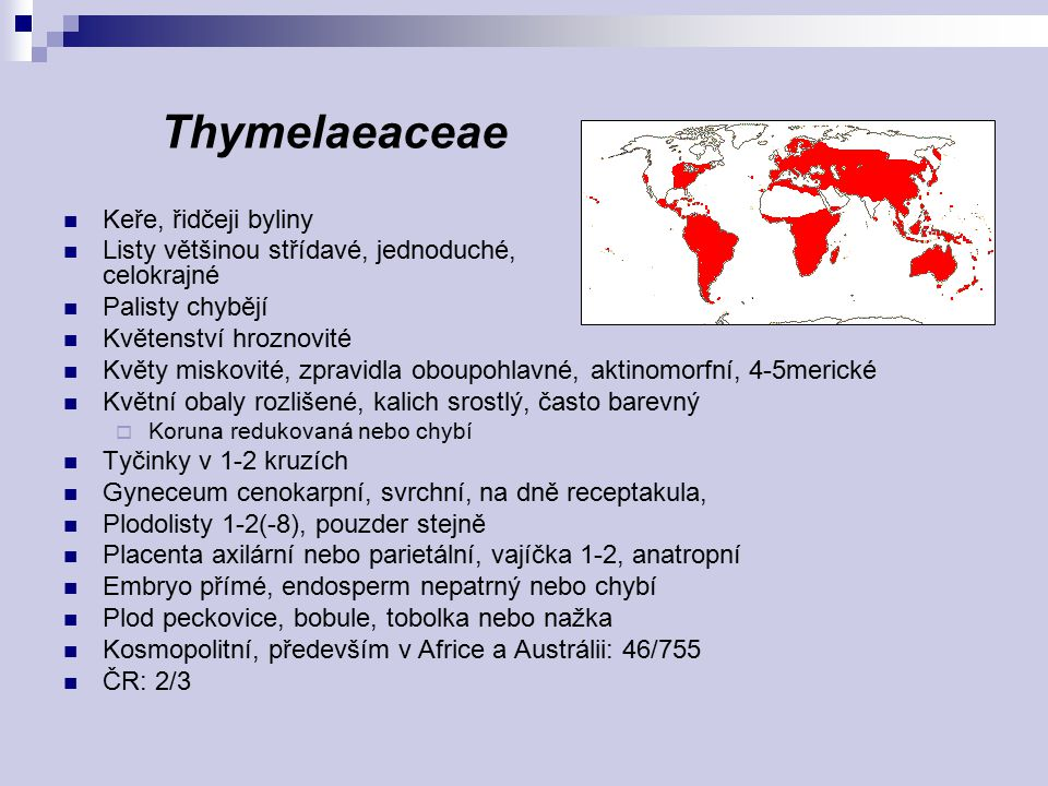 Thymelaeaceae Keře, řidčeji byliny
