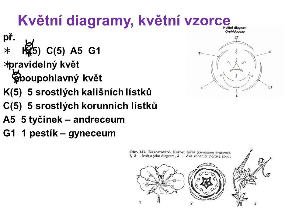 Květní diagramy, květní vzorce