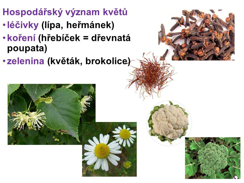 Hospodářský význam květů