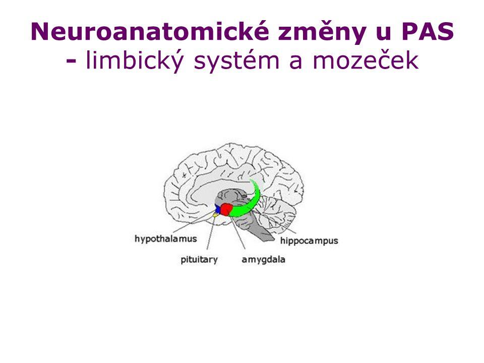 Neuroanatomické změny u PAS - limbický systém a mozeček
