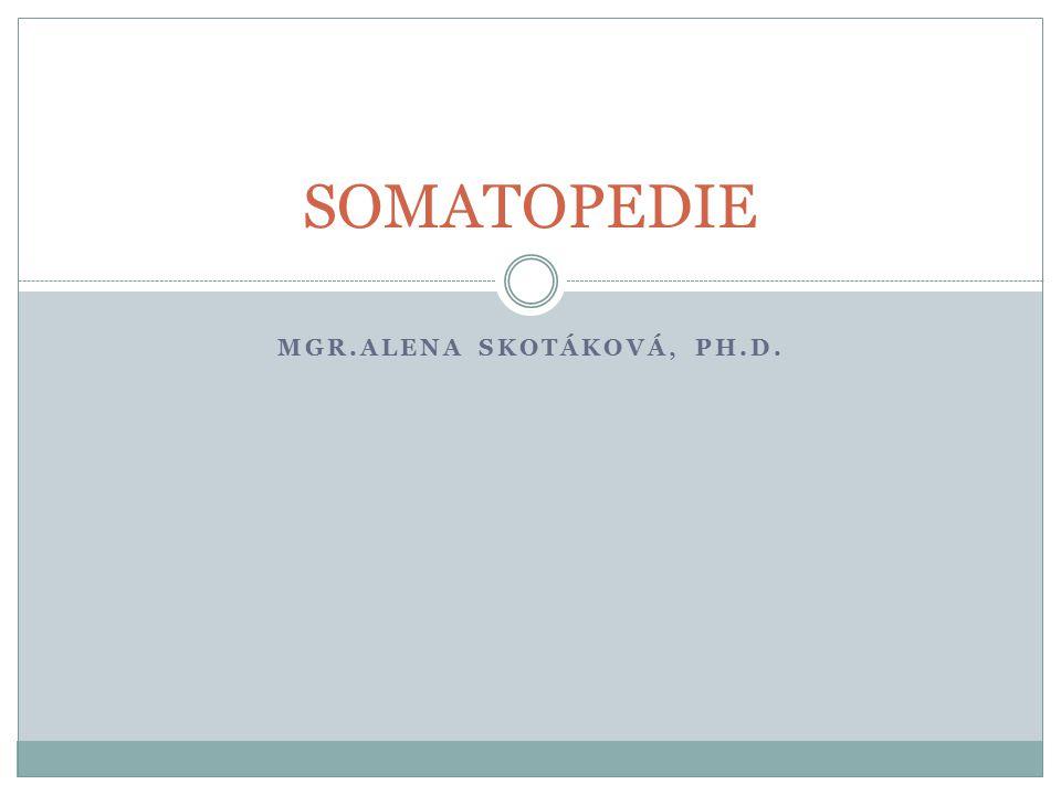 Mgr.Alena skotáková, ph.d.