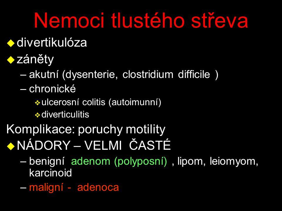 Nemoci tlustého střeva