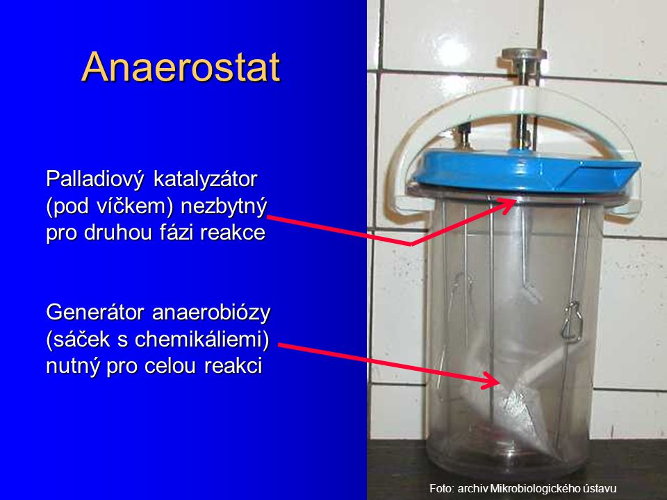 Anaerostat Palladiový katalyzátor (pod víčkem) nezbytný pro druhou fázi reakce. Generátor anaerobiózy (sáček s chemikáliemi) nutný pro celou reakci.