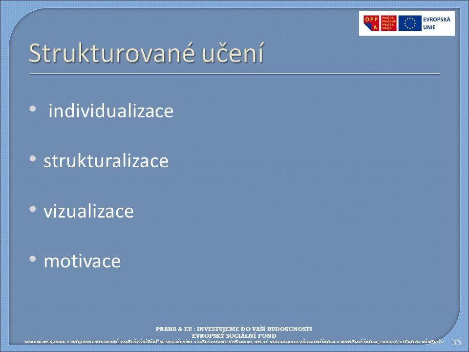 Strukturované učení individualizace strukturalizace vizualizace