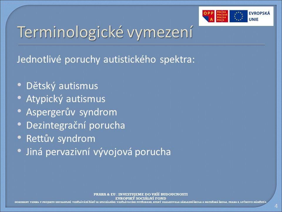 Terminologické vymezení