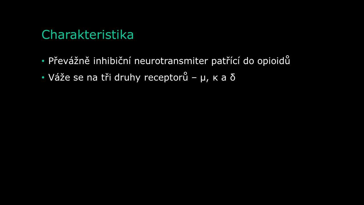 Charakteristika Převážně inhibiční neurotransmiter patřící do opioidů