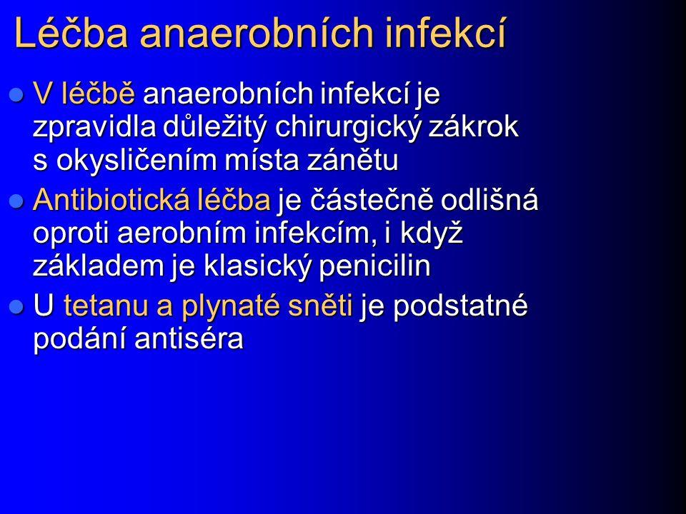 Léčba anaerobních infekcí