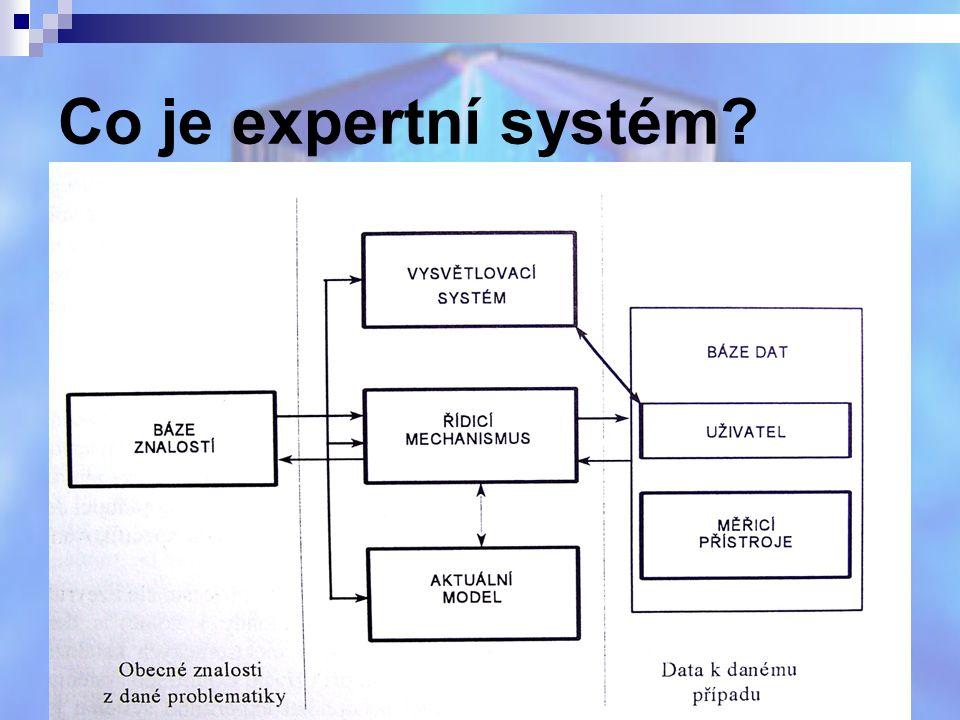 Co je expertní systém