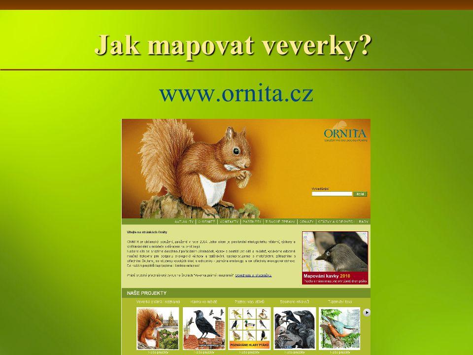 Jak mapovat veverky www.ornita.cz
