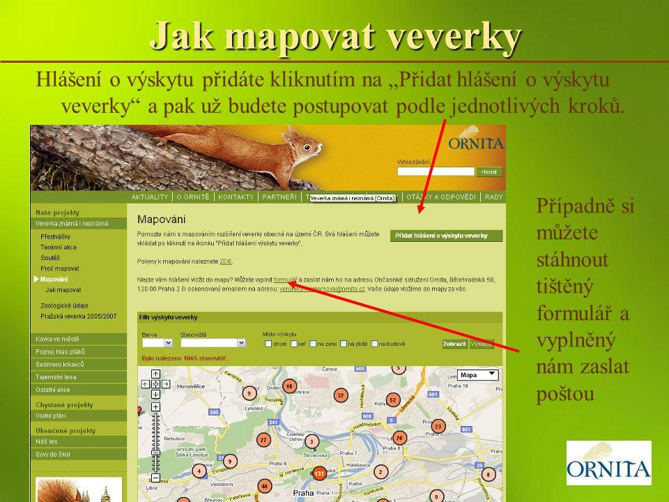 """Jak mapovat veverky Hlášení o výskytu přidáte kliknutím na """"Přidat hlášení o výskytu veverky a pak už budete postupovat podle jednotlivých kroků."""