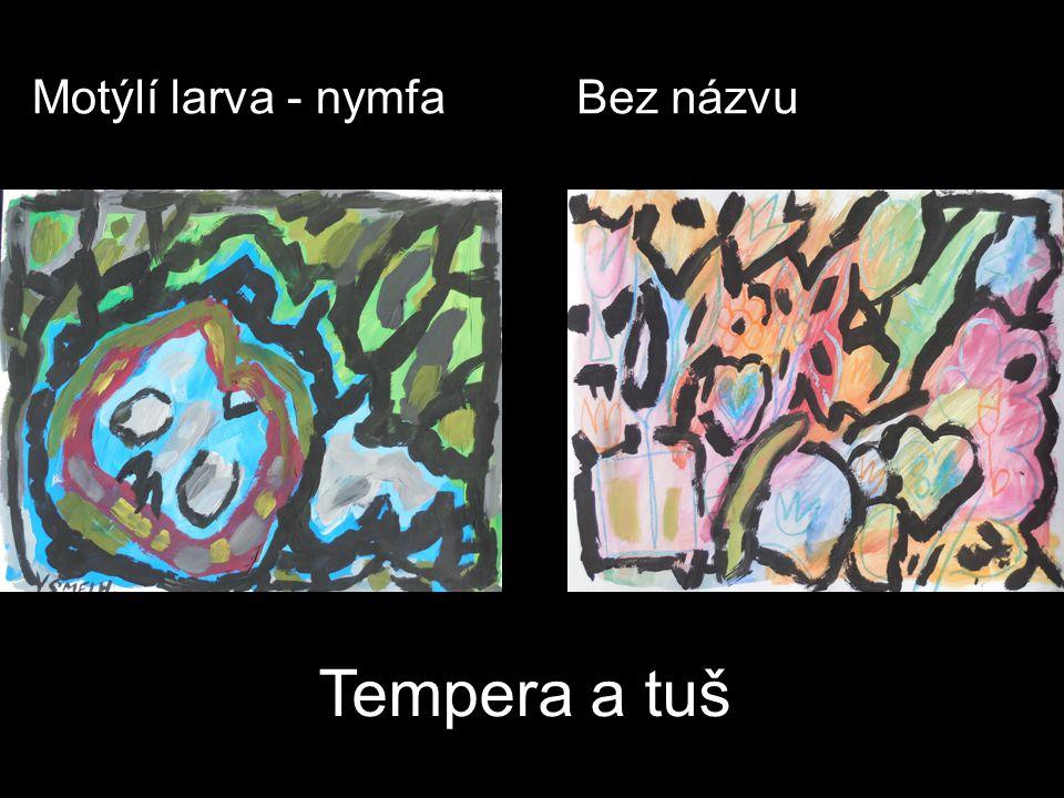 Motýlí larva - nymfa Bez názvu Tempera a tuš
