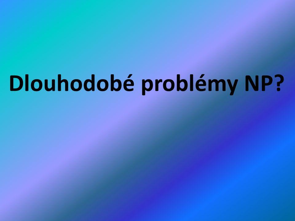 Dlouhodobé problémy NP