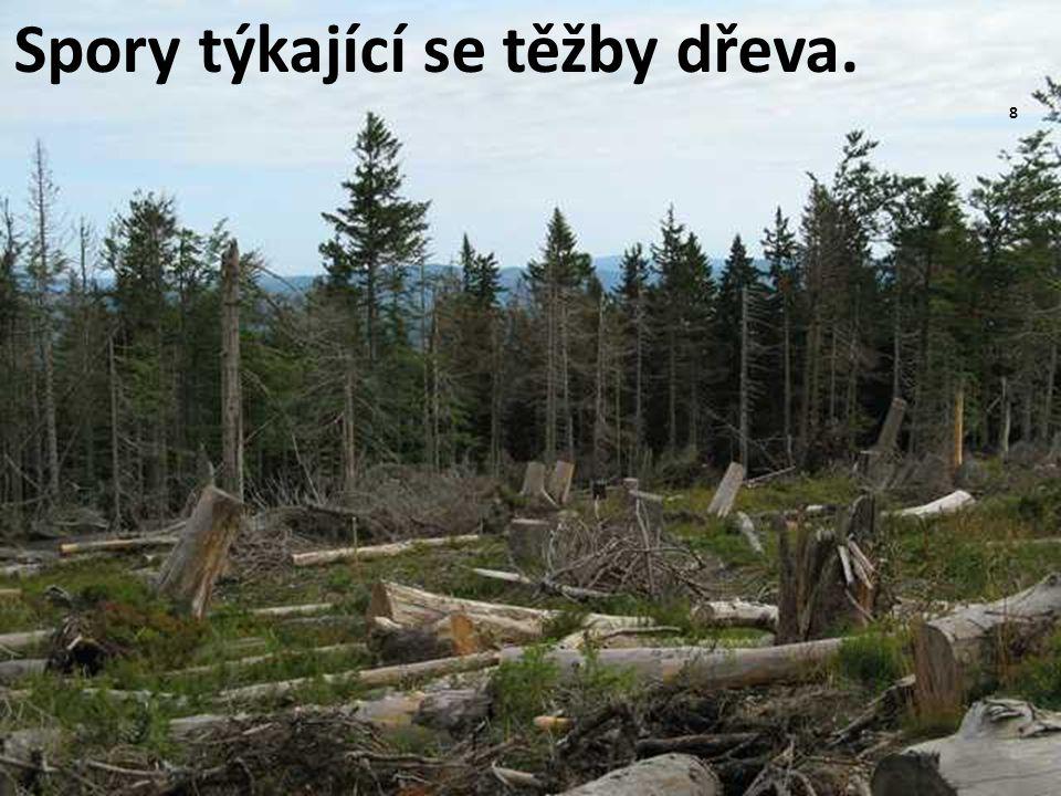 Spory týkající se těžby dřeva.