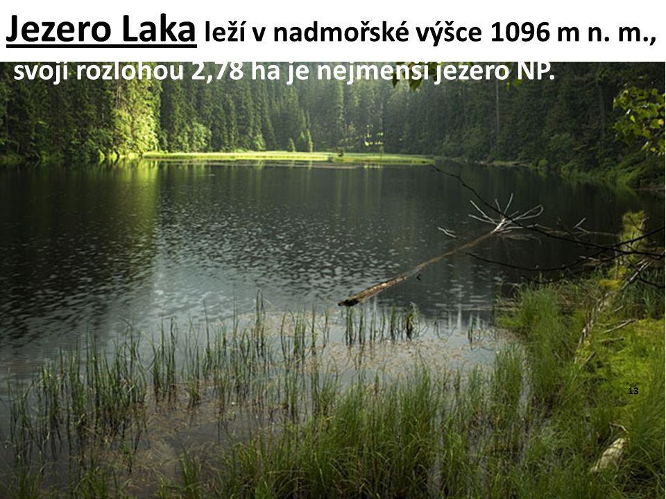Jezero Laka leží v nadmořské výšce 1096 m n. m.,