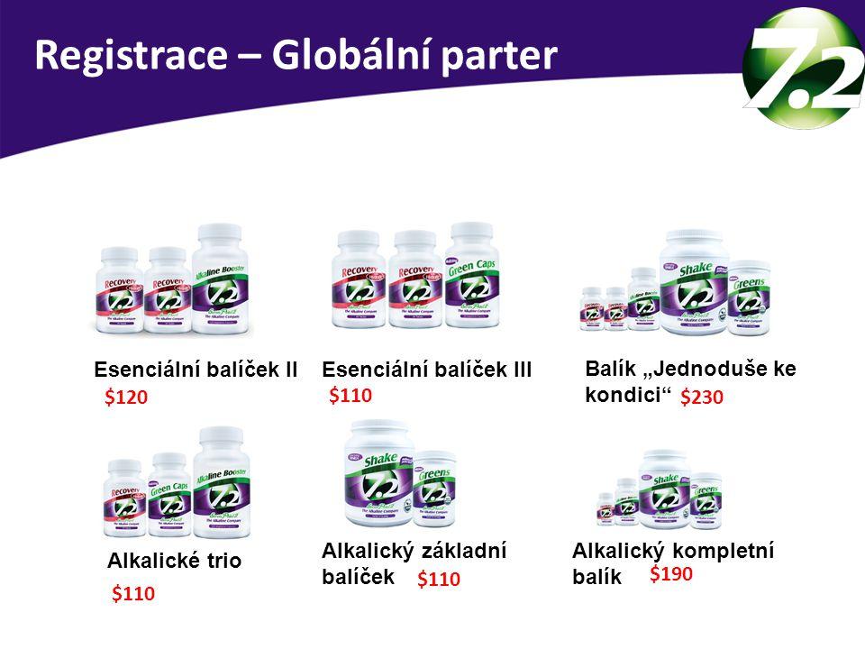 Registrace – Globální parter