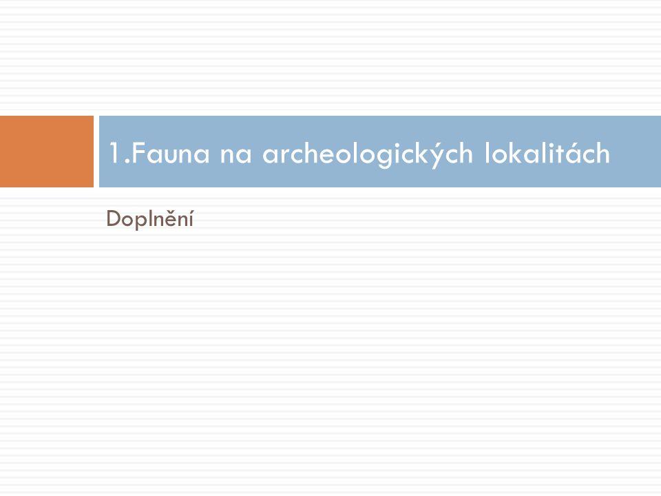 1.Fauna na archeologických lokalitách