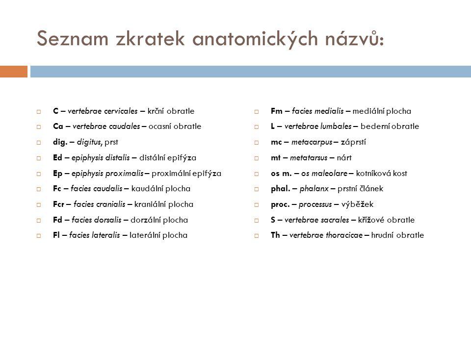 Seznam zkratek anatomických názvů: