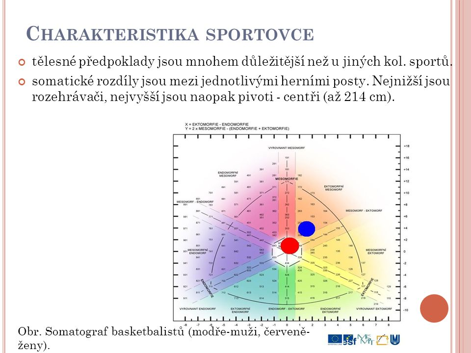 Charakteristika sportovce