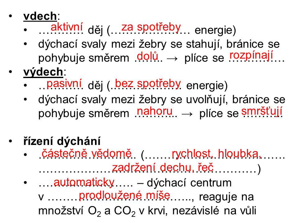 vdech: ………… děj (………………… energie) dýchací svaly mezi žebry se stahují, bránice se pohybuje směrem …….. → plíce se ……………