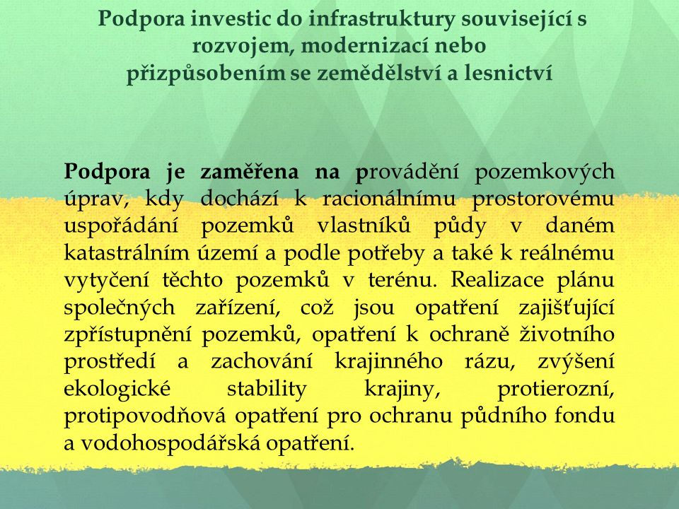 Podpora investic do infrastruktury související s rozvojem, modernizací nebo přizpůsobením se zemědělství a lesnictví