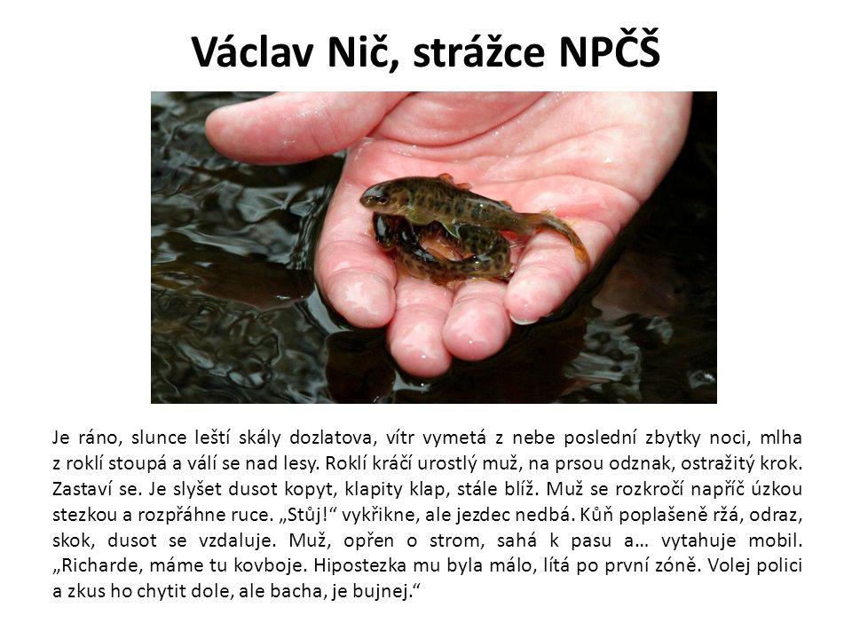 Václav Nič, strážce NPČŠ