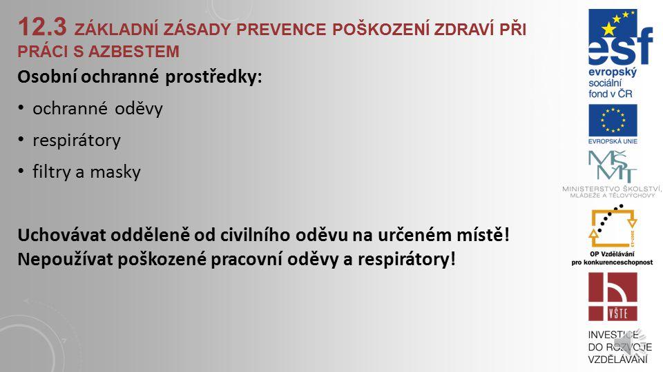 12.3 Základní zásady prevence poškození zdraví při práci s azbestem