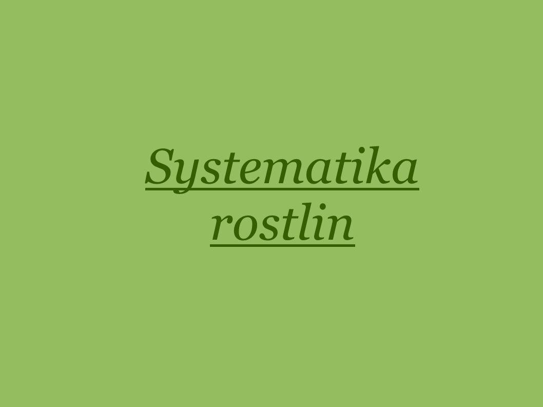 Systematika rostlin