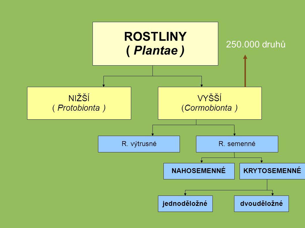 ROSTLINY ( Plantae ) 250.000 druhů NIŽŠÍ ( Protobionta ) VYŠŠÍ