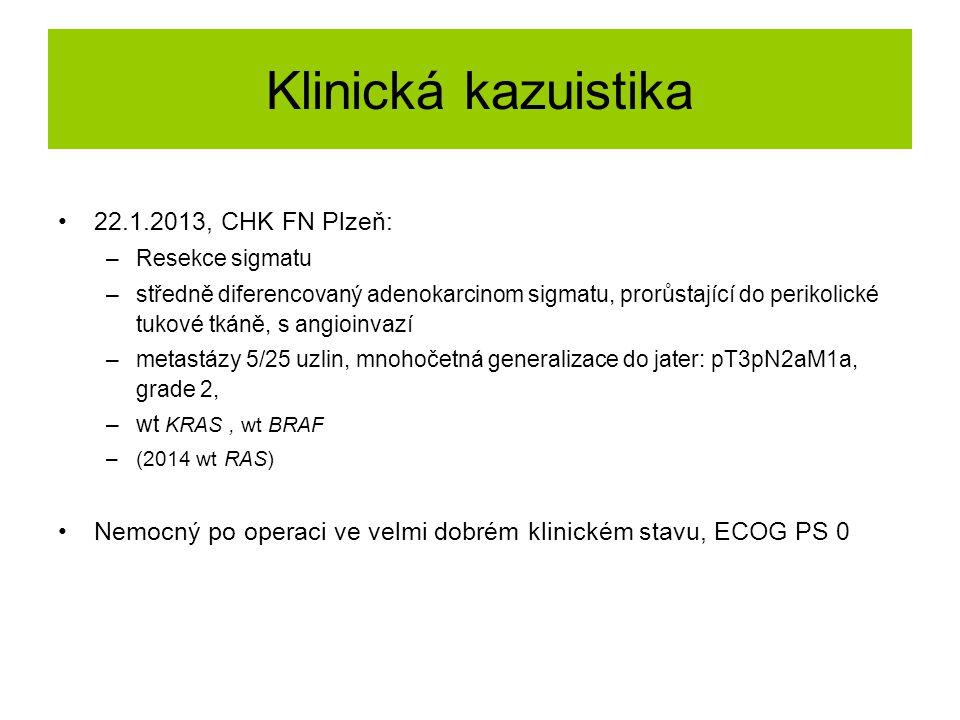 Klinická kazuistika 22.1.2013, CHK FN Plzeň: