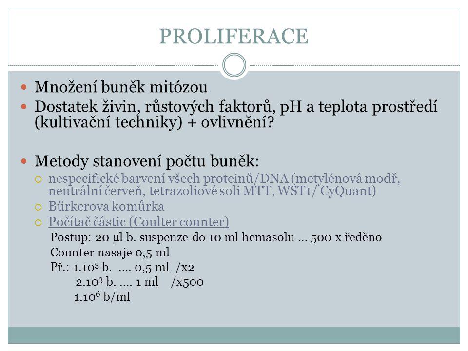 PROLIFERACE Množení buněk mitózou