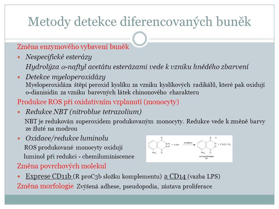 Metody detekce diferencovaných buněk