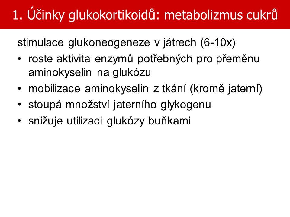 1. Účinky glukokortikoidů: metabolizmus cukrů