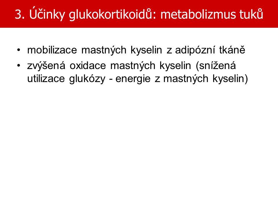 3. Účinky glukokortikoidů: metabolizmus tuků