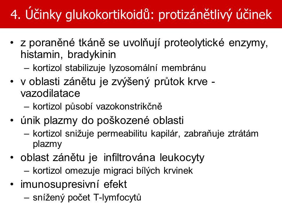4. Účinky glukokortikoidů: protizánětlivý účinek