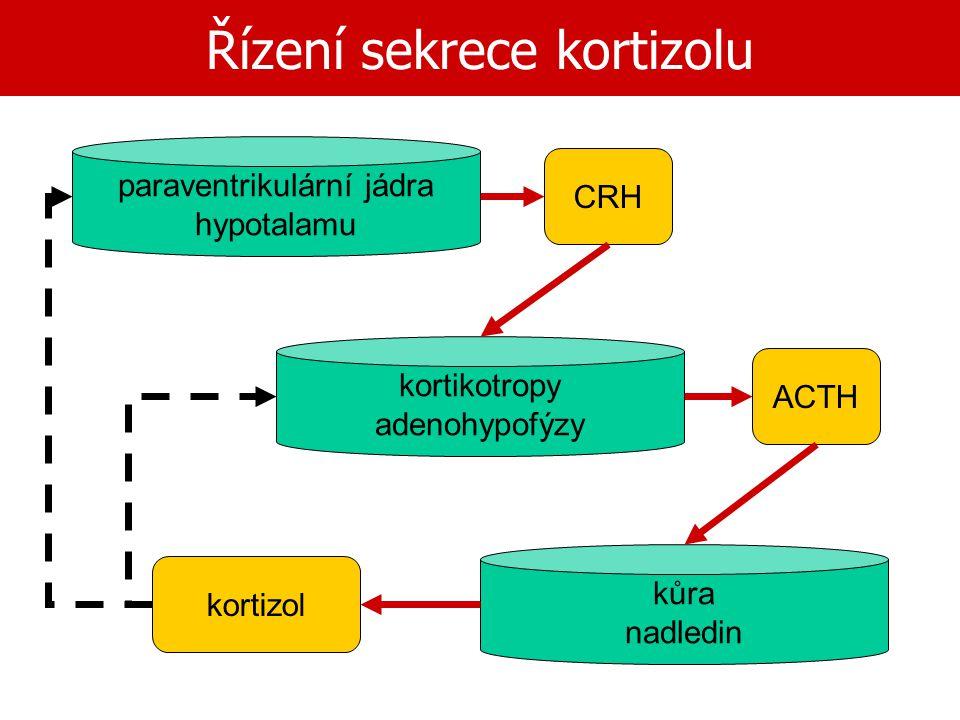 Řízení sekrece kortizolu