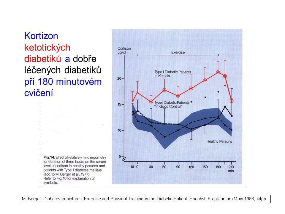 Kortizon ketotických diabetiků a dobře léčených diabetiků při 180 minutovém cvičení