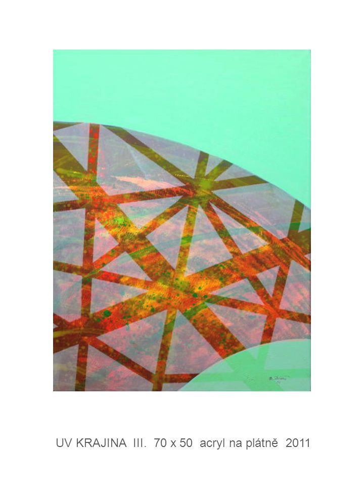 UV KRAJINA III. 70 x 50 acryl na plátně 2011