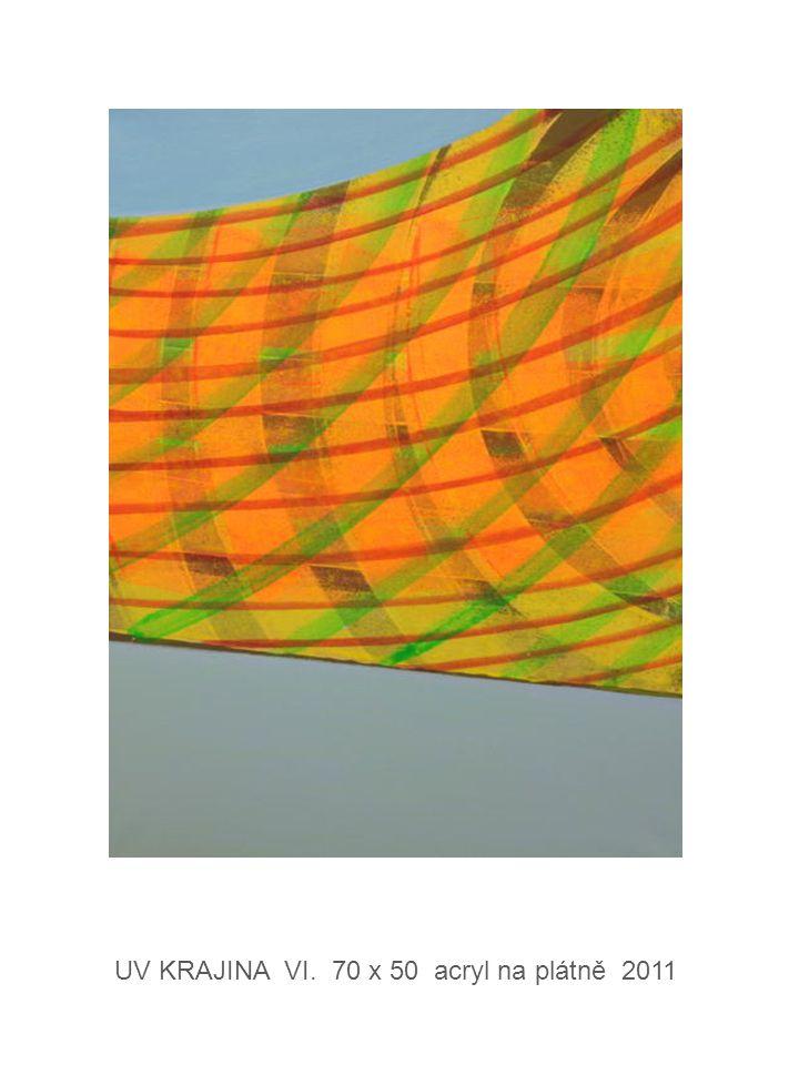 UV KRAJINA VI. 70 x 50 acryl na plátně 2011