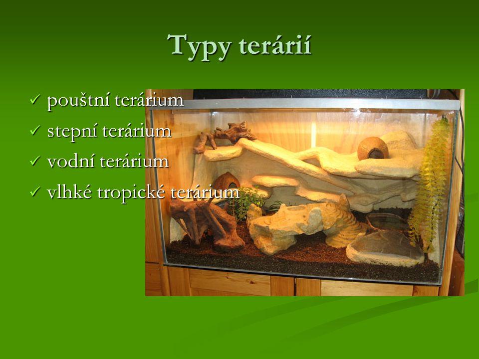 Typy terárií pouštní terárium stepní terárium vodní terárium
