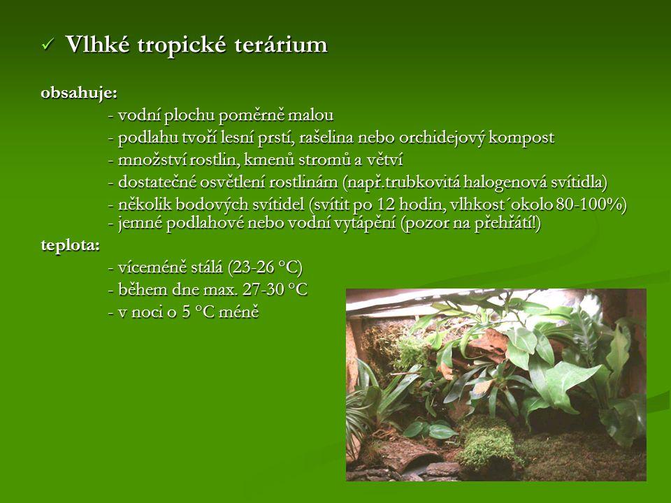 Vlhké tropické terárium