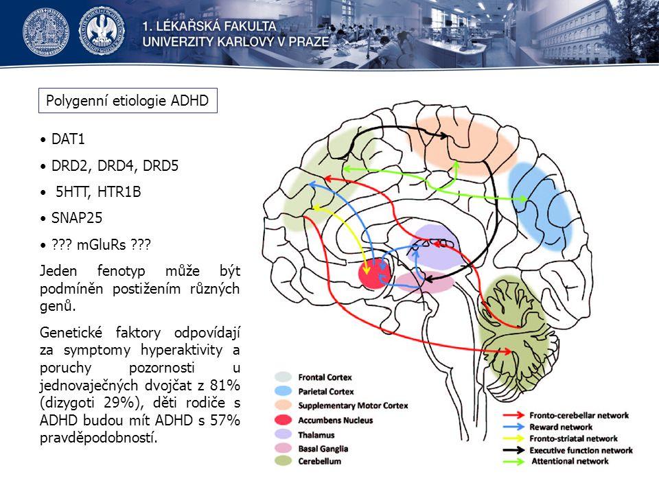 Polygenní etiologie ADHD