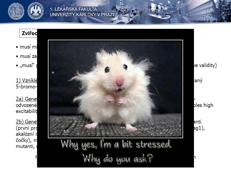 Zvířecí modely ADHD musí mimikovat základní behaviorální charakteristiky ADHD (face validity)