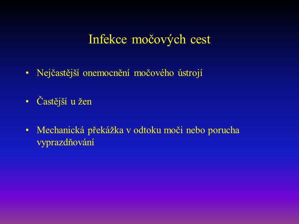 Infekce močových cest Nejčastější onemocnění močového ústrojí