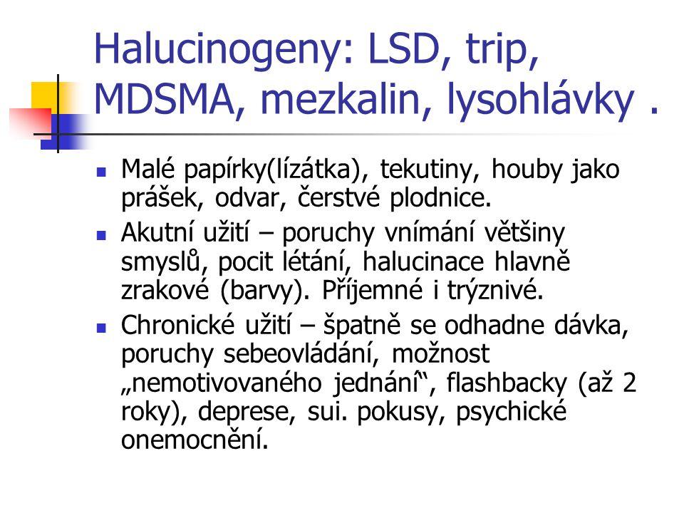 Halucinogeny: LSD, trip, MDSMA, mezkalin, lysohlávky .