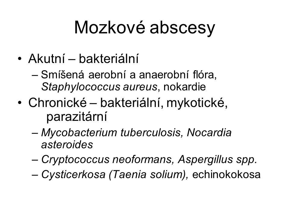 Mozkové abscesy Akutní – bakteriální
