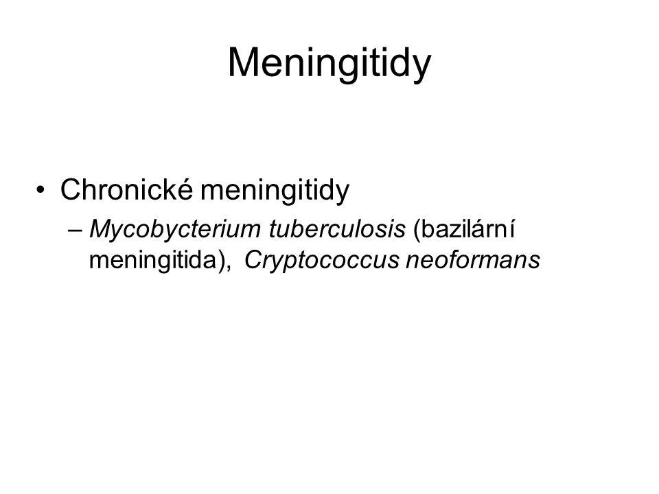 Meningitidy Chronické meningitidy