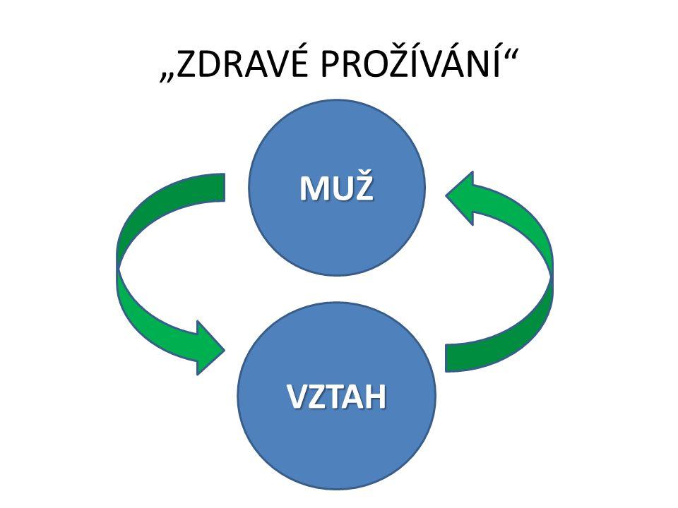 """""""ZDRAVÉ PROŽÍVÁNÍ MUŽ VZTAH"""