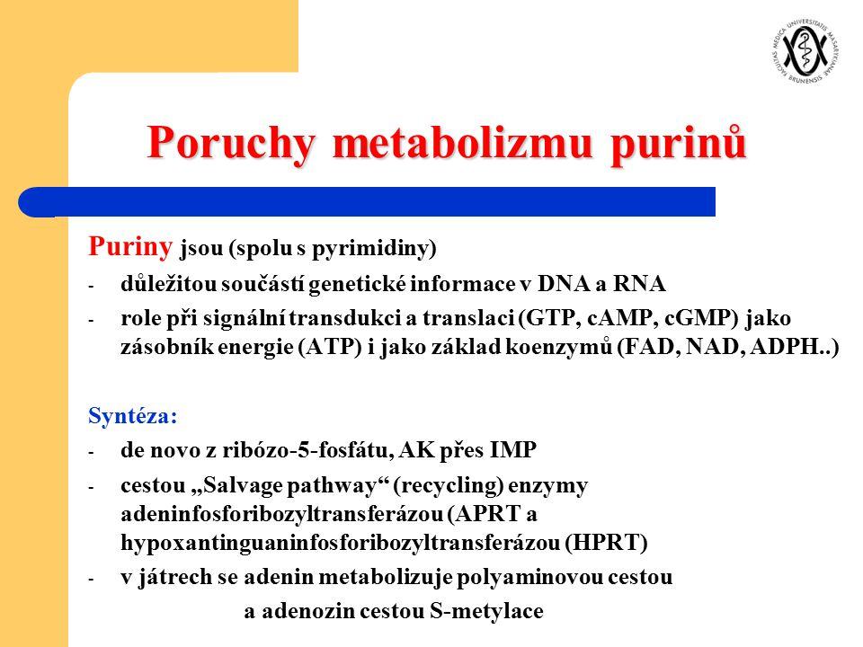 Poruchy metabolizmu purinů